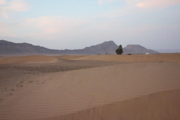正直、はじっこなのでそこまで超砂漠ではなかったけど、いちおうこういう絵も撮れるかんじ