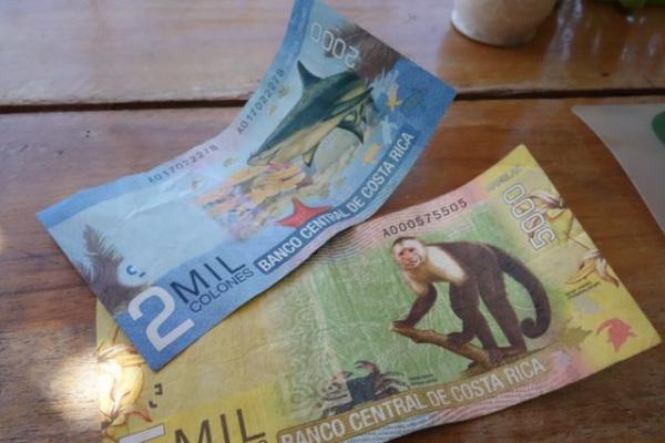 コスタリカのお金はやたらとかわいらしい。ちなみに米ドルも平行して使える